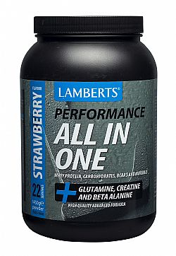 Lamberts Performance All In One Protein Strawberry (γεύση Φράουλα), 1450gr